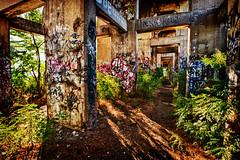 graffiti alley philly 3 (Jeffrey Johnson ~~shutter_fringe) Tags: urban color philadelphia urbandecay pop urbanexploration graffitti spraypaint philly hdr bold urbex boldcolor urbandecade sept2010 nikhdrefexpro thegraffitiundergroundinphiladelphia