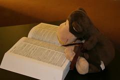 264-365 Inspiration (Chunky van Monkey) Tags: inspiration monkey stuffedanimal dictionary chunky 365daysproject