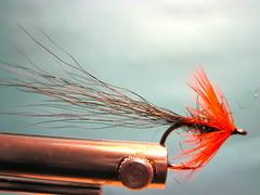 Jay Nicholas's Baby Boss Chinook Salmon Fly