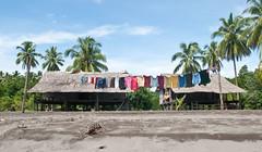 Wash on the line on the beach (Sven Rudolf Jan) Tags: beach coconut palm wash clothesline papuanewguinea tufi janhasselberg