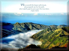 10: Daily Inspirational Bible Verse