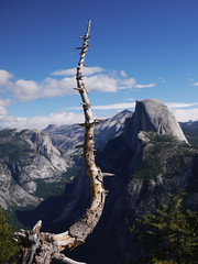 upstaging half dome