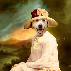 The eternal optimist - l'ternelle optimiste (Martine Roch) Tags: portrait dog cute lady square labrador antique surreal photomontage doggy manray boudi petitechose martineroch flypapertextures