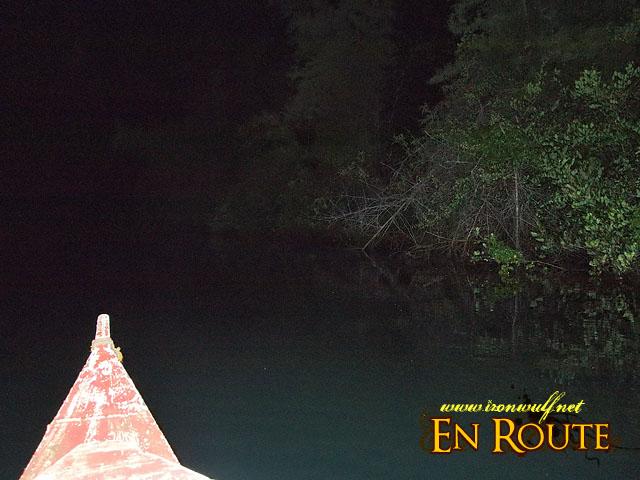 Cruising along Iwahig River at Night