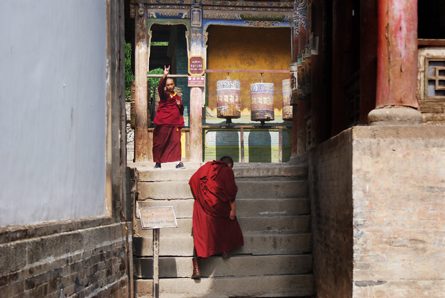 Monks at Kumbum Monastery