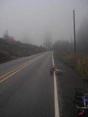 Foggy Timber summit