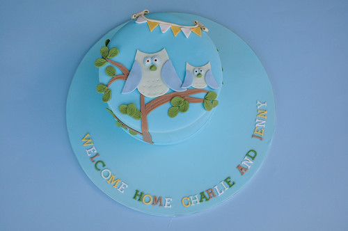 BABY SHOWER (OWL THEME)