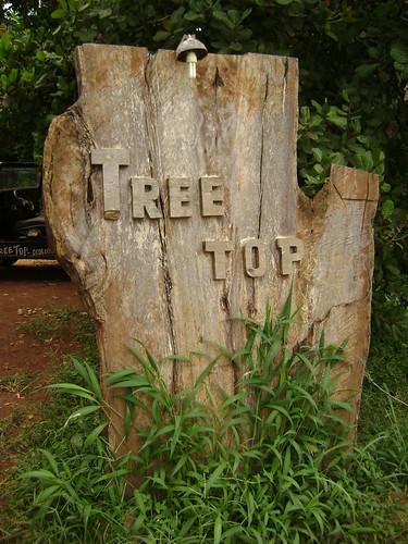 Treetops Ratanakiri