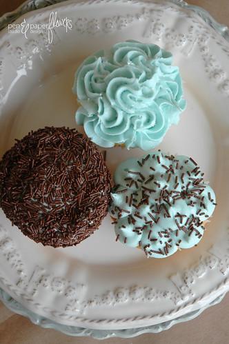 cupcakes8169