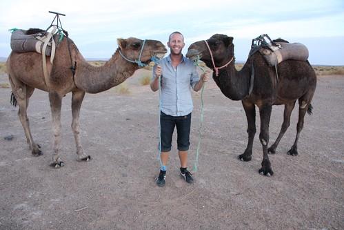 Sahara, Morocco - 154