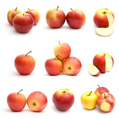 Red apples isolated on white background (Skobrik) Tags: red food white apple collage closeup set fruit garden juicy healthy natural sweet cut juice object fresh delicious health slice vegetarian concept sliced diet fruity section isolated freshness nutrition vitamin lobule