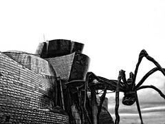Spider and Guggenheim (Samuele Silva) Tags: spider spain bilbao museo guggenheimmuseum
