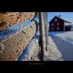 frost (stella-mia) Tags: winter snow blur ice norway canon frost dof bokeh redhouse explore sn coldair 2470mm ringsaker explored 5dmkii veslelien annakrmcke