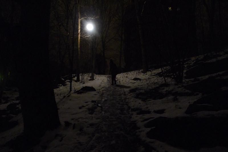 snöbollssara