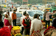 IMG_1306 (asadjaved) Tags: new india flower place market circus delhi mandi rajiv connaught chowk phool