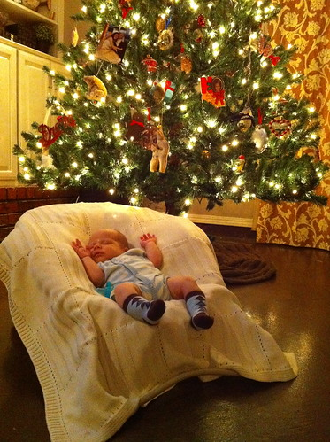Putting up a Christmas Tree is hard work!