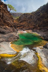 swimming pool in natural rock at wadi dirhir(Wadi Ayhft), dixam, plateau, soqotra island, unesco, yemen (anthony pappone photography) Tags: pictures travel trees plants color tree nature colors digital canon lens landscape island photography photo flora colorful colours colore foto image felix natur picture natura best unesco arabia yemen fotografia albero paesaggio reportage photograher pianta dracaenadraco arabo yemeni phototravel yaman dracena draceana socotra arabie arabiafelix  arabianpeninsula cinnabari     alyaman yemenpicture yemenpictures eos5dmarkii  alberodelsanguedidrago dracenacinnabari