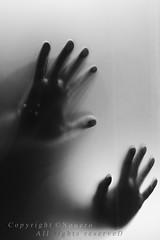 (NOURA - alshaya ) Tags: white black love canon flickr hand d iso 500 non lovly noura 2011       nouero