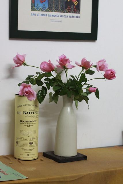 Hoa hoét con giai tặng