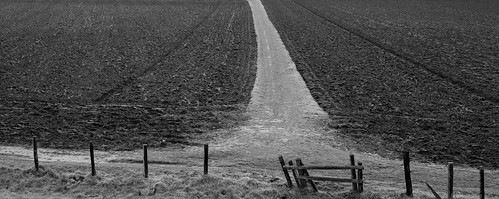 Divide and plough
