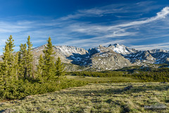 This Will Do (kevin-palmer) Tags: bighornmountains bighornnationalforest wyoming summer june clear sunny blue sky clouds cloudpeakwilderness tamron2470mmf28 nikond750 circularpolarizer highlandpark blacktoothmountain mountwoolsey sawtoothridge snowcapped green grass meadow backpacking evening penrosepeak