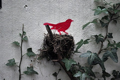 Bird's nest (id-iom) Tags: street england urban bird london art graffiti cool stencil nest ivy vandalism derelict brixton idiom