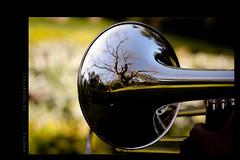 Trombone (marcoscesar | Simplicidade e bom gosto) Tags: banda photography band trombone fotografia inhotim brumadinho instrumentomusica instrumentmusic inhotimbrumadinho