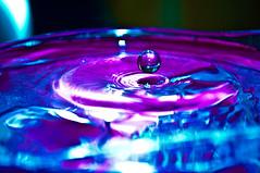 water drop (Wildlife SC) Tags: waterdrop album waterdroplets
