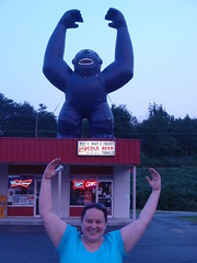 kristin, with gorilla