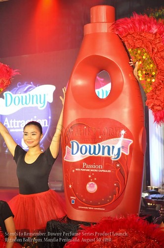 2010-08-30 Downy Scents LR-10