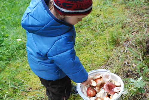 aias seenel:)/picking wild mushrooms in the garden:)