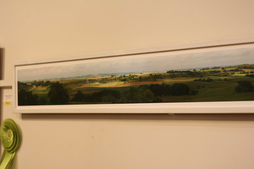 Olmsted County Panorama in Fine Arts