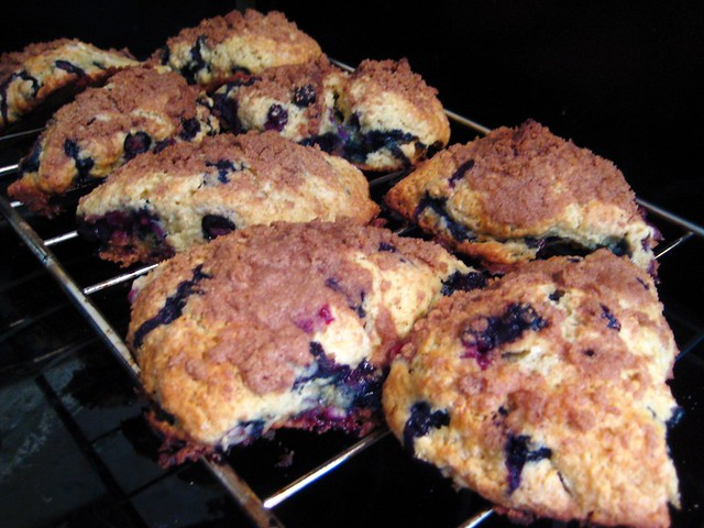 Scones made with blueberries picked out of our front yard!