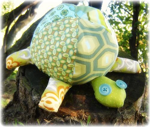 Tortoise 015
