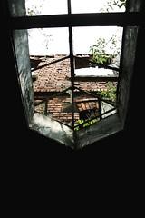 _MG_4591 (Danko.Green) Tags: abandoned graffiti fabrik kultur villa industrie nürnberg abriss bär verlassen zucker industriekultur verfallen abgerissen zuckerbär rothenburgerstrase rothenburgerstrasse