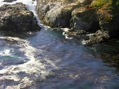 Forbidding Cove (brunosmi) Tags: pacific californiashore