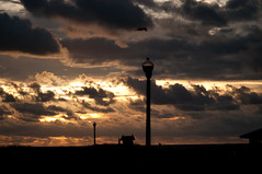grab a little piece of eternity (nosha) Tags: ocean new sea vacation sky orange cloud sun holiday beach lamp beautiful beauty clouds sunrise dawn newjersey streetlight grove horizon nj shore je
