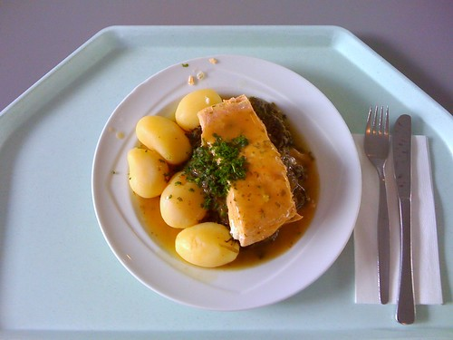 Pochierter Lachs in Estragonsauce / Poached salmon with tarragon sauce