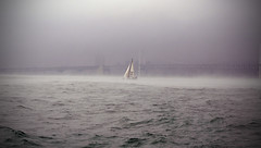 Out of the mist (Mikey Houghton) Tags: ocean bridge sea mist motion cold water fog sailboat 50mm boat movement nikon asia sailing gray korea busan sail lonely mast roughwater