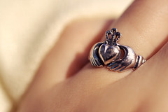 two hands, a heart and a crown. (gioiadeantoniis) Tags: irish white gold hands heart traditional ring crown 250 claddagh dcr raynox gsfp temadellasettimana