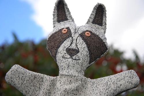 Axenroos: de wasbeer
