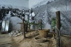 Museo Santiago Graffigna 705