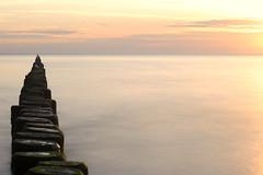 Buhnen V (hiasl_3) Tags: sea strand meer exposure baltic nd sonnenaufgang ostsee belichtung usedom kste longtime langzeit buhne kstenschutz stubbenfelde gettyimagesgermanyq1 gettygermanyq2 gettygermanyq4