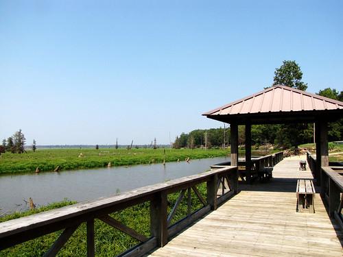 Millwood Lake-6