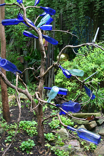 japanese garden bottle tree