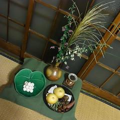 otsukimi 2010
