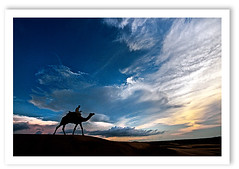 (Divs Sejpal) Tags: life light sunset sky india color colour nature silhouette clouds skyscape landscape sand asia colours desert dunes wide wideangle camel rider thar divs divyesh intrestingness flickrexplore explored flickrfrontpage divssejpal sejpal dsc6294jpg