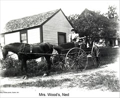 Horse and Buggy, Dublin New Hampshire (Keene and Cheshire County (NH) Historical Photos) Tags: horse house harness horseandcarriage horseandbuggy dublinnh vernaculararchitecture mrswood dublinnewhampshire maryerobbe