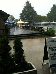 雨の昭和記念公園