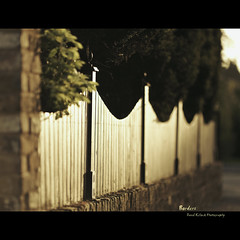Borders - Fence Fridays [24/09/2010] (Dkillock) Tags: sunset sunlight david 35mm canon fence prime wooden open bokeh mark magic wide full ii desaturation frame 5d f2 panels usm fullframe ef mk borders fridays 135mm mkii markii wideopen hff llens canonef135mmf2lusm killock 5dmarkii 5d2 5dmkii magicprime dkillock fencefriday fencefridays davidkillockphotography